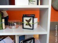 Una buena idea: ata los libros en la estantería