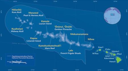 La mayor área marina protegida del mundo alberga también la esponja más grande