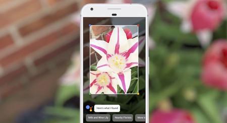 Google Lens se empieza a integrar en el Asistente de Google [Actualizado]