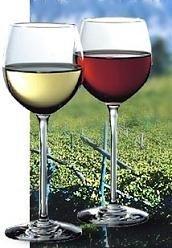 La fibra dietética del vino