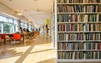 Becas para acoger escritores en bibliotecas ¿No suena maravilloso?