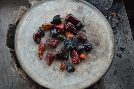 Chile Chilhuacle: el ingrediente emblemático de México y la cocina oaxaqueña que está a punto de desaparecer