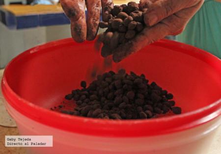 Frijoles o granos de café cubiertos agtc c m d a