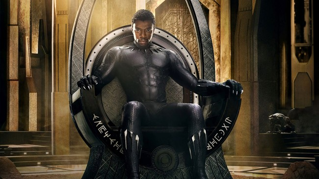 Black Panther Movie 4k