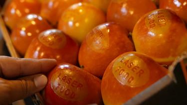 Tecnología láser española para sustituir las pegatinas de frutas y verduras