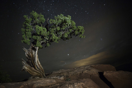 Diamond Nights Beth Moon 4