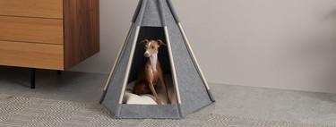 Muebles y accesorios con mucho estilo para regalar a tu mascota