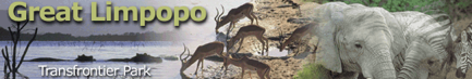 El Gran Parque Transfronterizo Limpopo