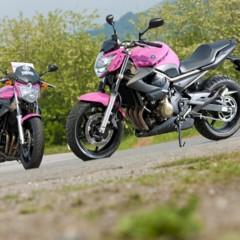 Foto 4 de 51 de la galería yamaha-xj6-rosa-italia en Motorpasion Moto