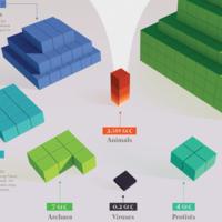 Toda la biomasa del planeta Tierra, comparada en un impresionante gráfico