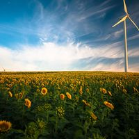 """""""En tres años las energías renovables serán las energías más baratas en todo el mundo"""", según Morgan Stanley"""
