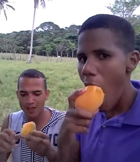 """Qué bacanería"""" o """"mira la mata full de mango"""": las frases del meme de Wellinton Quiw que se han colado en el imaginario colectivo"""