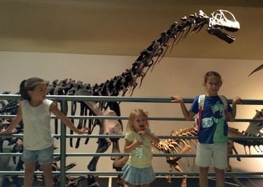 Planes con niños: visitamos el Museo de Ciencias Naturales de Madrid