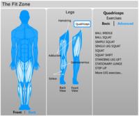 Completos y fáciles ejercicios de musculación online en MSN