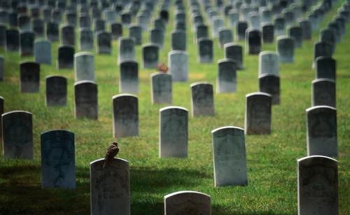 Todos nos vamos a morir: ¿qué pasará con todo el dinero que tienes en contenidos y bienes digitales?