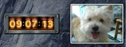 Dos widgets para adornar tu Dashboard
