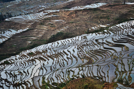 Terrazas de arroz de Honghe, China