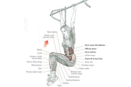 ejercicio-abs