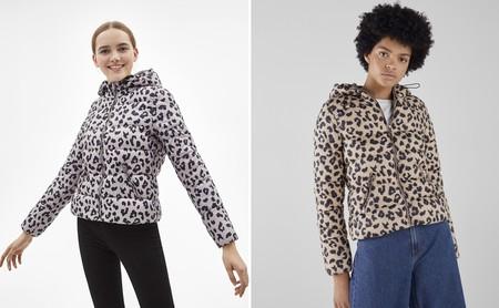 Plumones Bershka Leopardo