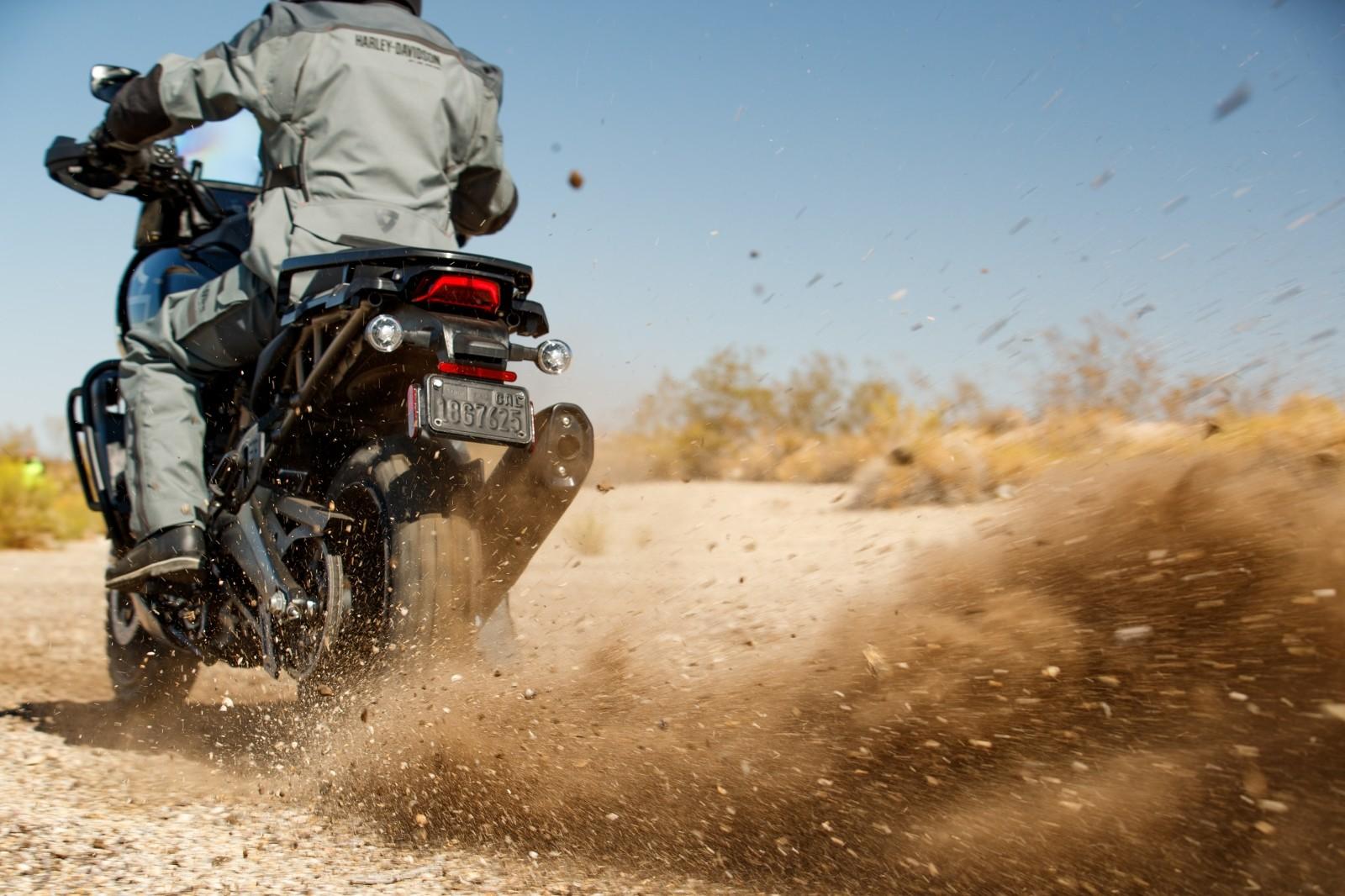 Foto de Harley-Davidson Pan America 2020 (10/15)