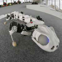 Si llevara piel, este robot es tan real que lo confundirías con un animal de verdad