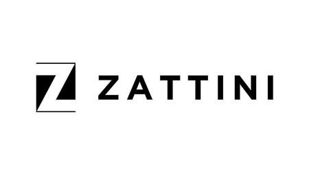 Zatini