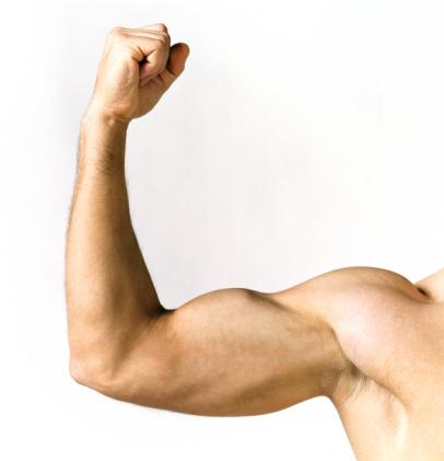 ¿Biceps y triceps en la misma sesión de entrenamiento?