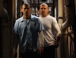Las próximas temporadas de Prison Break y House ya tienen fecha de estreno