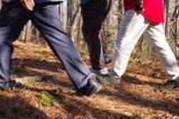 Practicar senderismo, una buena opción para realizar deporte en otoño