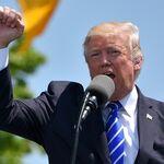 """El """"factor más importante"""" de desinformación en inglés sobre el coronavirus es Donald Trump"""