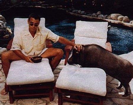 George Clooney habla con su cerdo