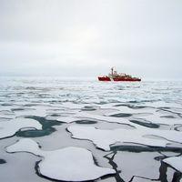 La basura marina en el Océano Ártico se ha multiplicado por 20