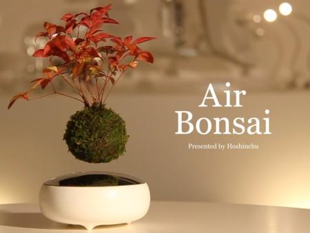 Air Bonsai, todos quisiéramos tener estos increíbles árboles flotantes en nuestro hogar