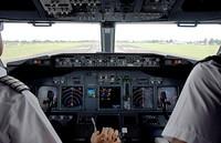 Pilotos borrachos y demás casos insólitos