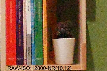 raw12800nr.jpg