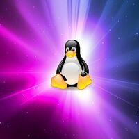 Niños, no intentéis esto en casa: estas son (algunas de) las distribuciones Linux más difíciles de instalar y usar