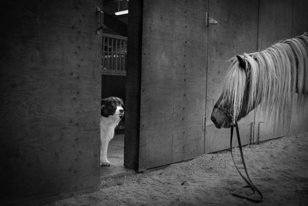 Foto de Leica M Monochrom: fotos oficiales (6/10)