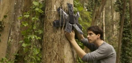 Tu antiguo teléfono puede ayudar a salvar la Selva Amazónica