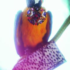 Foto 9 de 13 de la galería miroslava-duma-imagen-de-roger-vivier en Trendencias