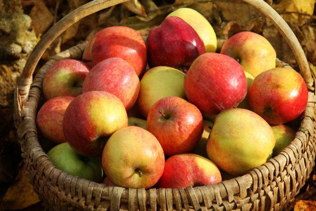Diferentes variedades de manzanas