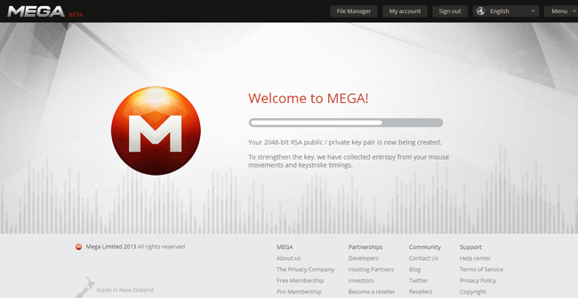 Mega RSA