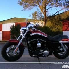 Foto 5 de 65 de la galería harley-davidson-xr-1200ca-custom-limited en Motorpasion Moto