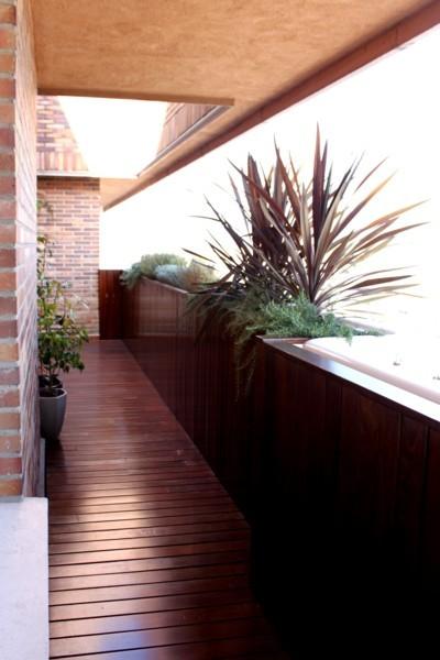 Jardín proyecto Habitación verde después