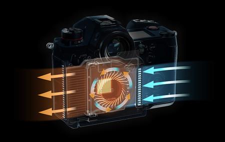 Image S1h Fan 1