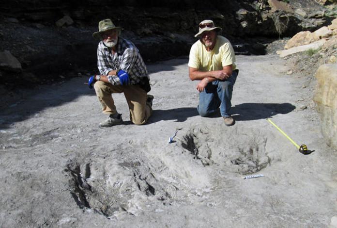 Por primera vez se encuentran impresiones de la piel de un dinosaurio perfectamente preservadas