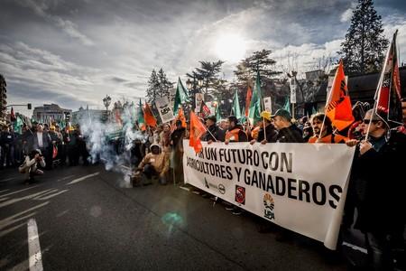 Rebelión en el campo: cuál es el problema real de los agricultores españoles (y de todo nuestro sistema de alimentación)