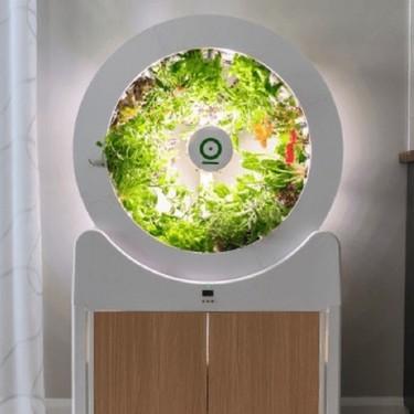 Tener un huerto en el salón es posible con esta máquina inteligente que permite cultivar fuera de temporada y sin pesticidas
