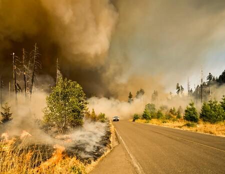 Los incendios forestales en California y Oregón ya han emitido más CO2 a la atmósfera que todas sus centrales eléctricas