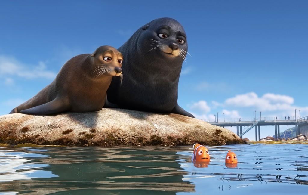 Leones Marinos Marlin Nemo Buscando A Dory