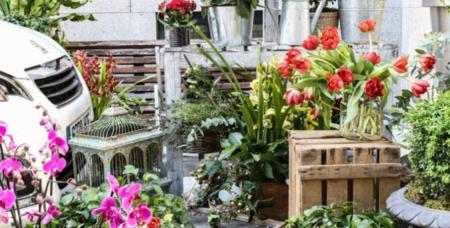 Mercado De Flores De Jorge Juan